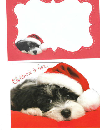 Christmas Card Unused With Envelope Puppy