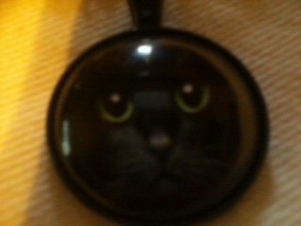 Black Cat beauty necklace free shipping