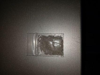Silver nail caviar