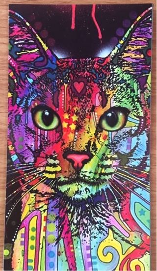 "COLORFUL CAT - 3 x 6"" MAGNET"