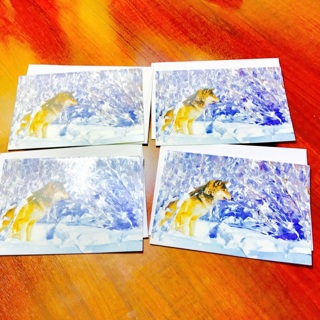Extremely Rare Vintage 1997 American Grey Wolf Blank CHRISTMAS Greeting Cards & Envelopes