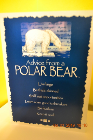 "****ADVICE FROM NATURE ""POLAR BEAR"" BLANK CARD W/ENVELOPE***FREE SHIPPING"