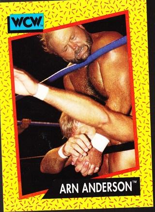'91 wcw wrestling card Arn Anderson