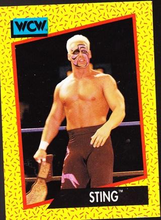 '91 wcw wrestling card Sting