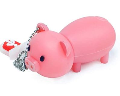 LEIZHAN 16GB Cute USB Flash Drive with Chain Piggy
