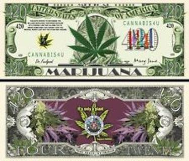 Marijuana Support 420 Novelty Dollar In Bill Display Case Super Cool!!