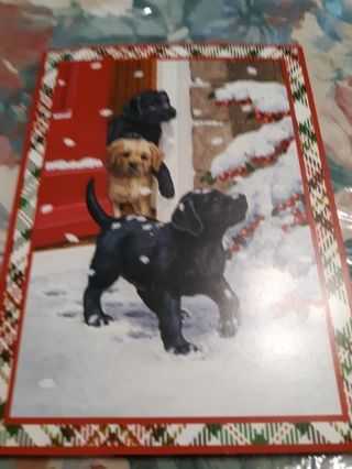 Six Doggone Christmas cards and 9 Assorted Greeting Cards