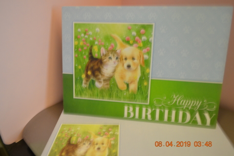 "****BEAUTIFUL BIRTHDAY ""PALS"" CARD W/MATCHING ENVELOPE***FREE SHIPPING"