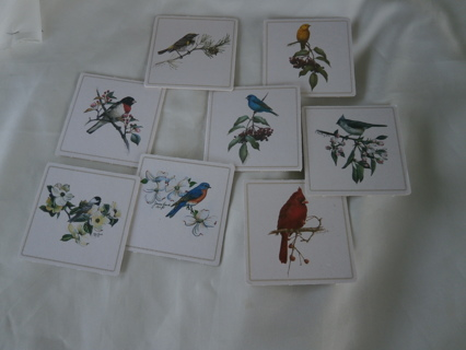 EIGHT SQUARE  COASTERS with different birds