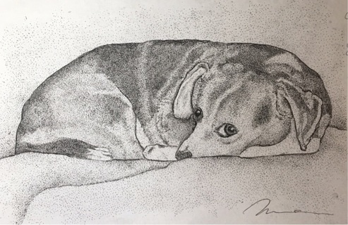 """Don't wake me! Cute dog - 5 x 7"""" art card by artist Nina Struthers - GIN ONLY"""