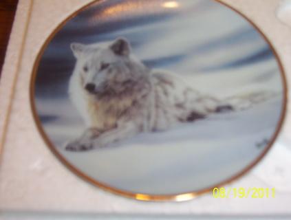 2 Mini Wolf plates
