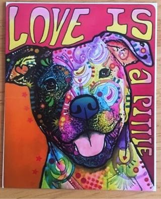 "LOVE IS A PITTIE - 4 x 3"" MAGNET"