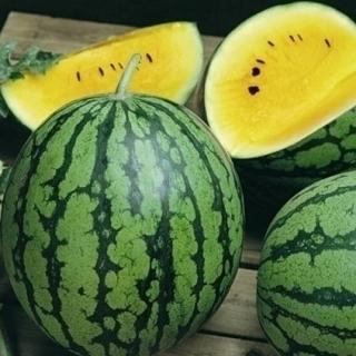 5 yellow watermelon seeds