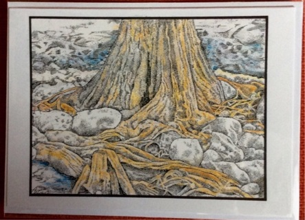 "CYPRESS ROOTS AND ROCKS - 5 x 7"" art card by artist Nina Struthers - GIN ONLY"