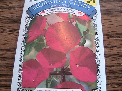 NEW 4 packs of Morning Glory seeds