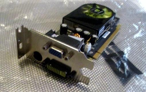 NVIDIA GeForce 8400GS - LOW Profile  graphics card - GF 8400 GS - 256 MB Series PCIEx1
