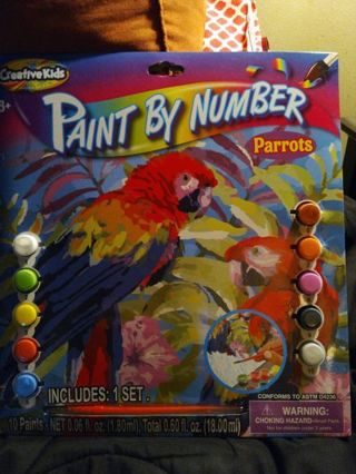 PAINT BY NUMBER (PARROTS) =FREE SHIPPING