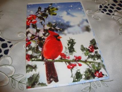 #12 Cardinal Bird getting snowed on ~ Christmas card ~ Free Shipping