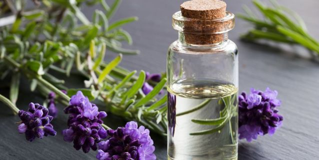 Brand New Lavender Essential oil