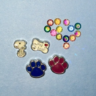 New Lot of Dog Lover / Pet Themed Floating Locket / Living Locket Charms.