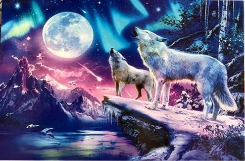 "Aurora Wolves - 4 x 5"" MAGNET"