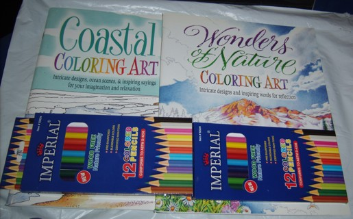 2 coloring books w/ 2 12ct boxes of colored pencils