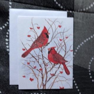 Cardinals Notecard