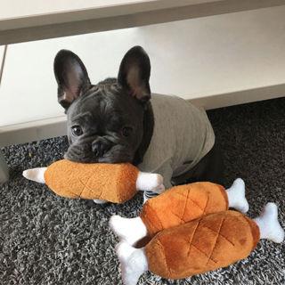 1x Pet Dog Puppy Toys Chicken Legs Design Small Dogs Chew Squeak Plush Sound Toy