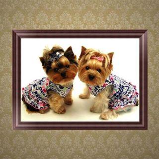 DIY Dog Animal 5D Diamond Embroidery Painting Rhinestone Cross Stitch Home Decor