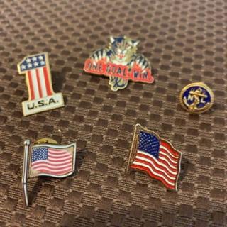 Lot of Vintage Lapel/Hat Pins, American Flags, NHL Panthers, U.S.N.L, U.S.A Pins
