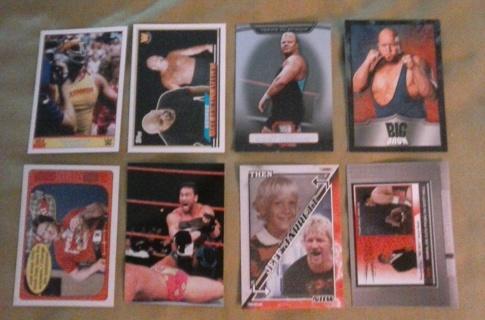 8 card wwe lot hof legends inserts