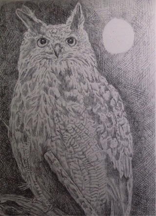Owls and other Birds ~ Art by Nina Struthers... Choose 2 for GIN