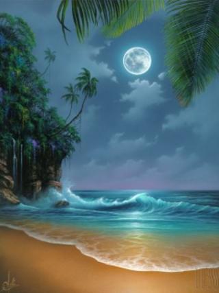 pic of beach