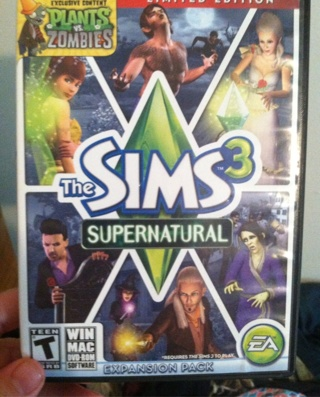 PC Sims game