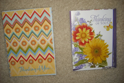 2 Thinking of You Cards w/Decorated Envs.