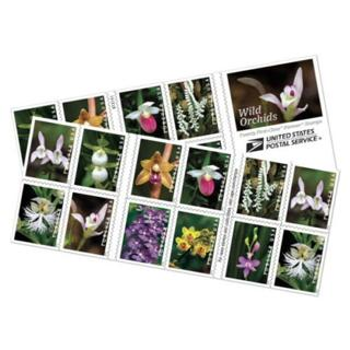 Brand New Wild Orchids USPS Postal First Class (55 Cents) Forever US Book of 20 Postage STAMPS