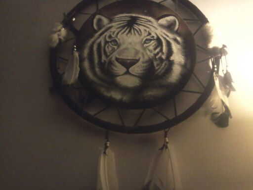Free White Tiger Dreamcatcher Home Decor Listia Auctions For Stuff