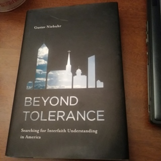 Beyond Tolerance Searching for Interfaith Understanding in America by Guystav Niebuhr