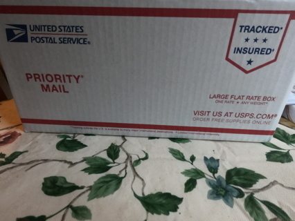 One Large Flat Rate Mystery Box