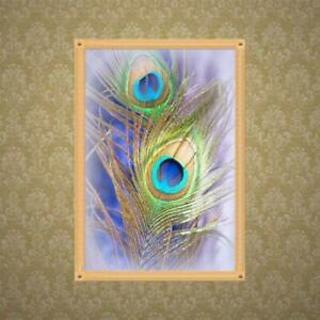 Feather 5D Full Drill Diamond Painting Embroidery Cross Stitch Kit Rhinestones