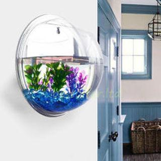 Brand New Wall Aquarium or Terrarium