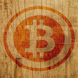 $100 Dollars Worth of Bitcoins