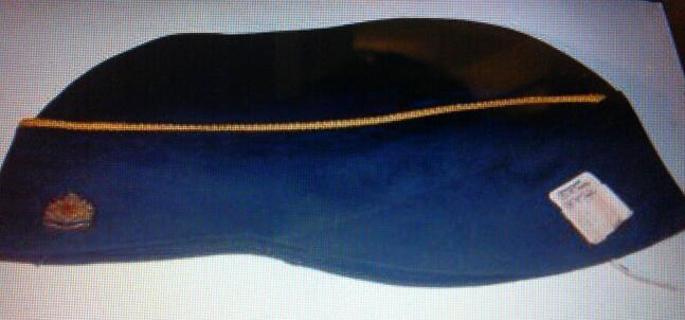 BSA Den Mother's cap