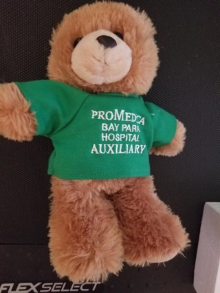 Brown Bear with shirt (removeable)