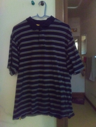 Men's SZ L Aeropostile Polo