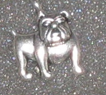 Chesty Marine Bulldog Silver Charm Get it now gets free surprise