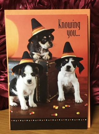 Puppies with Witch Hats(envelope included)