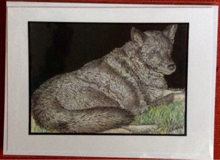 "WOLF DOG - 5 x 7"" art card by artist Nina Struthers - GIN ONLY"