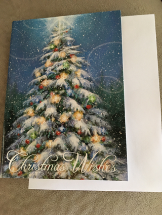 A BEAUTIFUL CHRISTMAS CARD WITH SPARKLES AND A NIGHTIME EFFECT WITH ENVELOPE