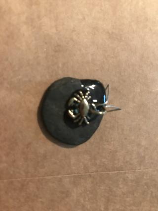 crab on stone  ID  U41